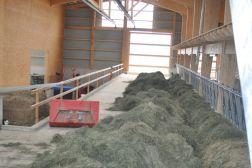 Batiment-agricole-8